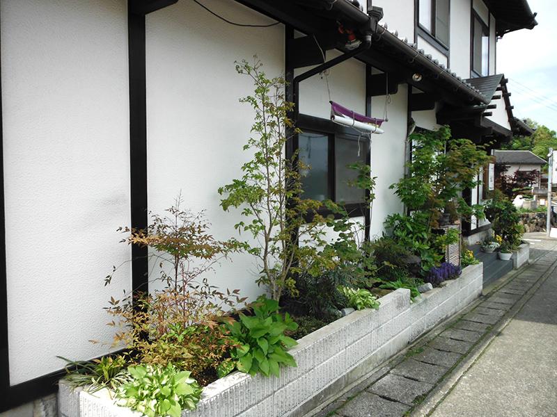 saikai-ichi04